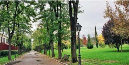 Paisaje o vista de Parque de la Bombilla